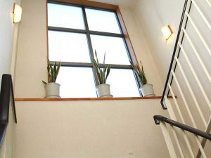 家族葬ホール(階段)